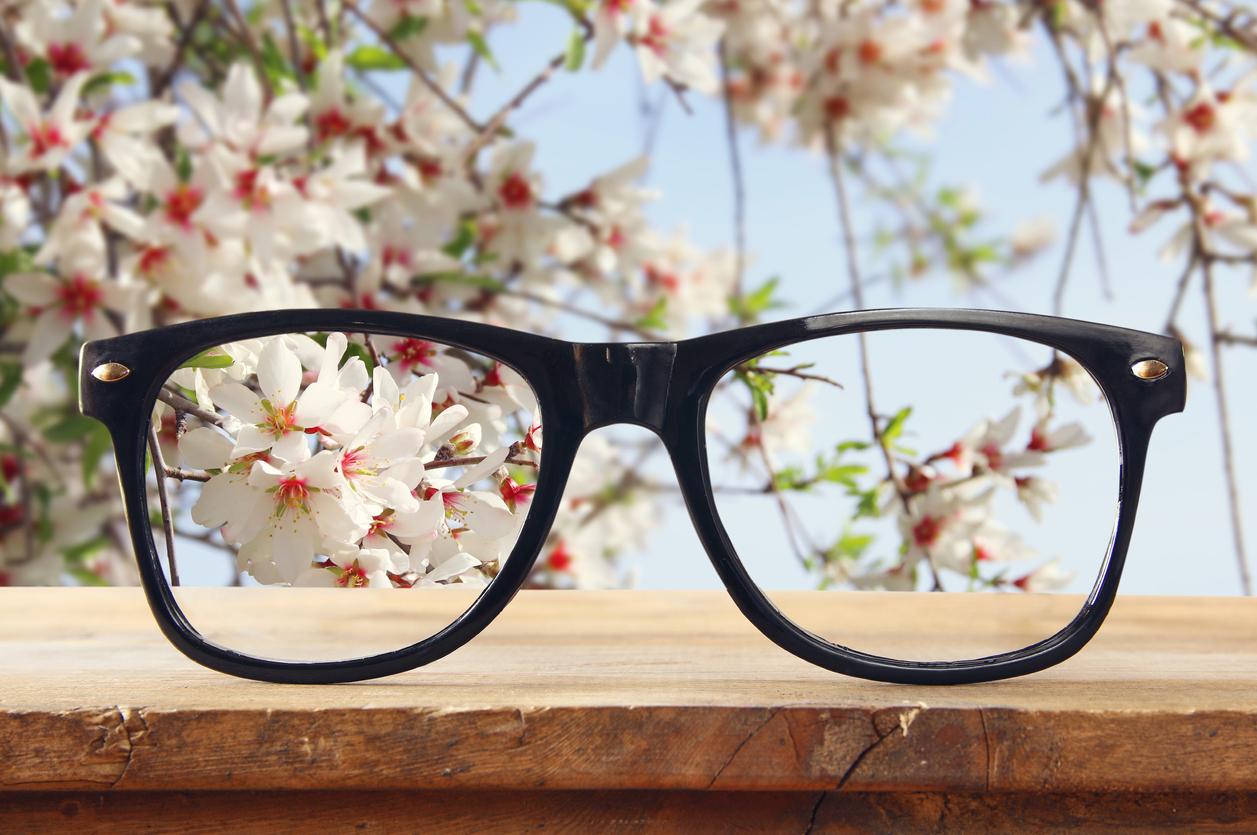 Schwarze Brille vor Kirschblüte